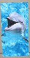 Dolphin Laughing Face Beach Towel